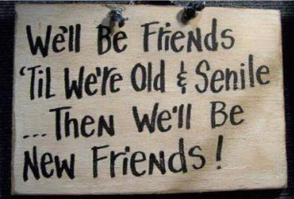 Getting Old Together Quotes: Old And Senile Friends