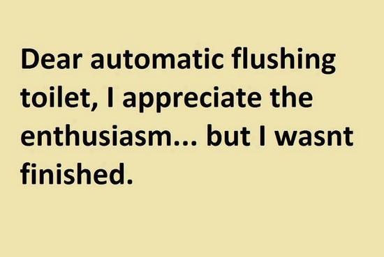 Dear automatic fluching toilet