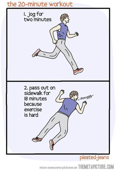 The 20 min workout