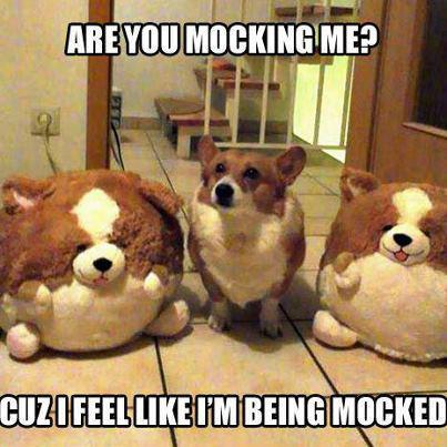 Are you mocking me