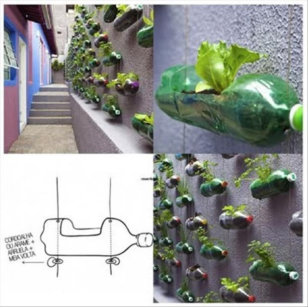 Outdoor idea7