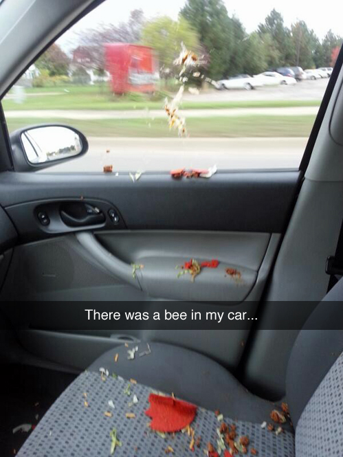 There was a bee